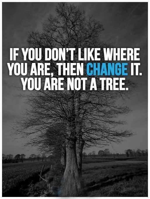 omul copac
