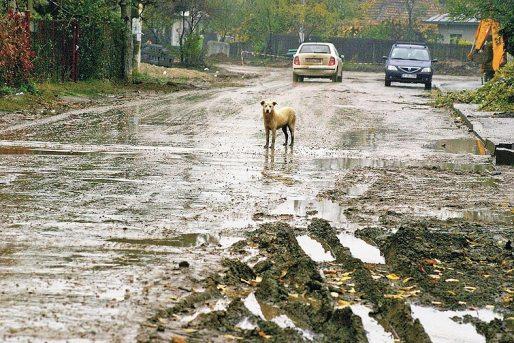 Ce am învățat despre România după 14 zile de plimbat prin Europa